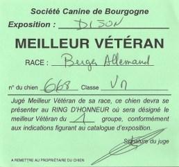 """Carton """"Meilleur Vétéran"""" pour Dax de la Bête des Vosges lors de l'Exposition Canine Internationale de Dijon 2016."""