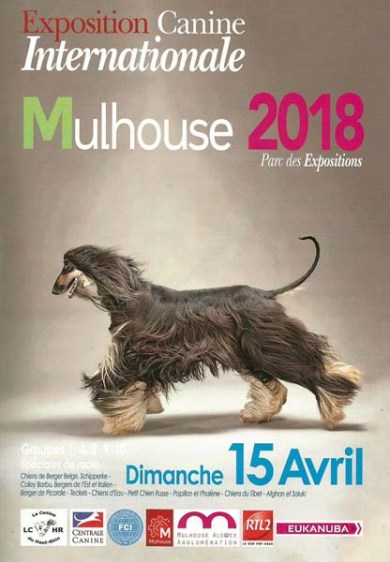 Exposition Canine Internationale - Mulhouse 2018